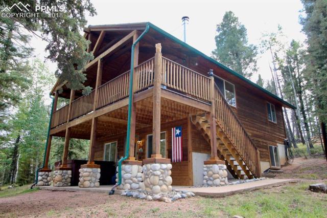 108 Spring Valley Lane, Florissant, CO 80816 (#6802069) :: 8z Real Estate