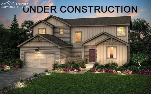 12768 Trejo Circle, Parker, CO 80134 (#6805224) :: Action Team Realty