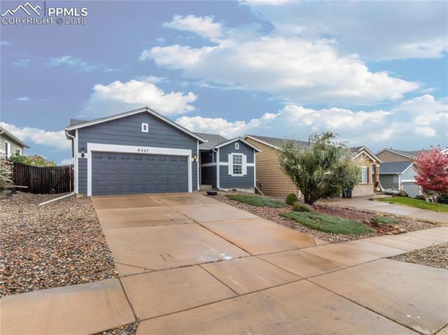 6557 Alibi Circle, Colorado Springs, CO 80923 (#6808795) :: 8z Real Estate