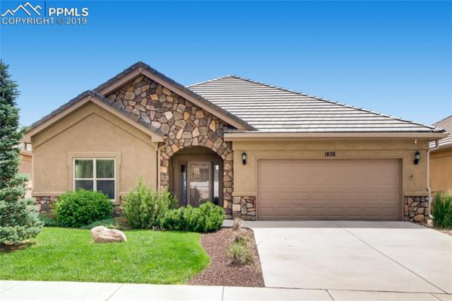 1838 Parliament Drive, Colorado Springs, CO 80920 (#6816081) :: 8z Real Estate