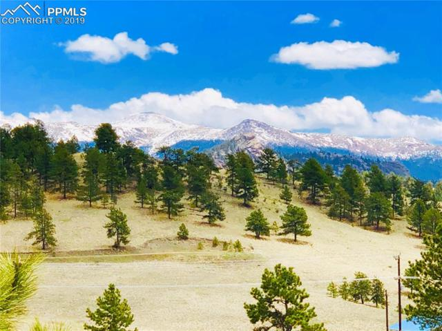 12077 County 1 Road, Florissant, CO 80816 (#6816939) :: The Peak Properties Group