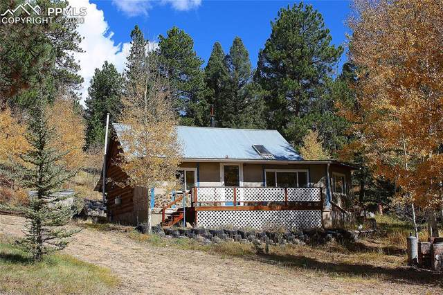 5945 Cedar Mountain Road, Divide, CO 80814 (#6817108) :: The Treasure Davis Team