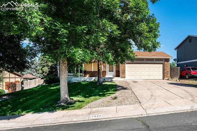 7922 Horizon Drive, Colorado Springs, CO 80920 (#6817725) :: Springs Home Team @ Keller Williams Partners