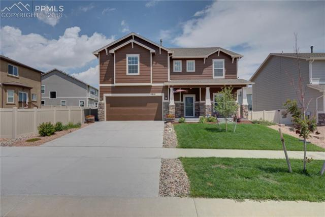 8810 Dry Needle Place, Colorado Springs, CO 80908 (#6817864) :: 8z Real Estate