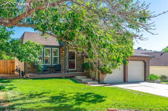 2420 Sweet Water Court, Colorado Springs, CO 80919 (#6819689) :: The Daniels Team