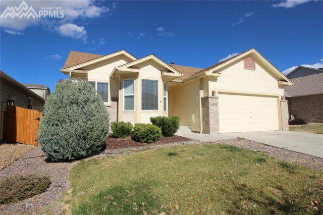 7446 Flathead Lake Drive, Colorado Springs, CO 80923 (#6819898) :: 8z Real Estate