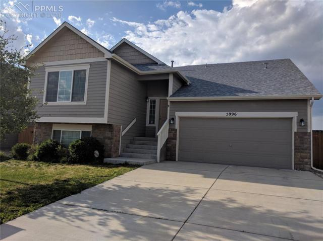 5996 Dancing Sun Way, Colorado Springs, CO 80911 (#6821515) :: The Treasure Davis Team