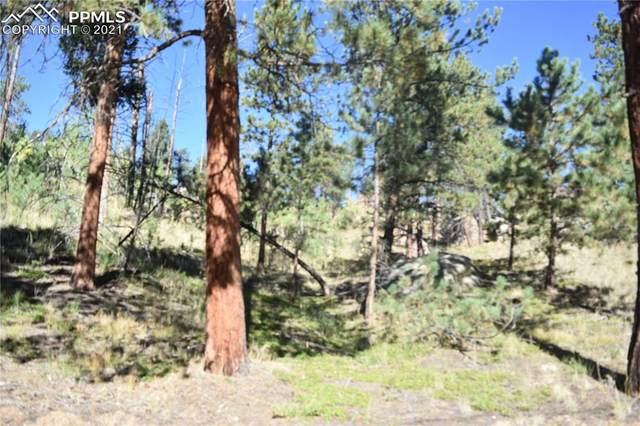 267 Overlook Circle, Sedalia, CO 80135 (#6823899) :: Simental Homes | The Cutting Edge, Realtors