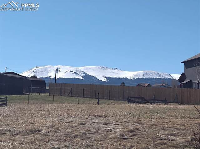 00 E Aspen Drive, Divide, CO 80814 (#6835135) :: Tommy Daly Home Team