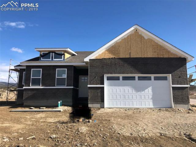 3571 Telegraph Trail, Canon City, CO 81212 (#6835431) :: Tommy Daly Home Team