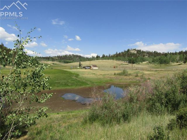 964 Hidden Valley Drive, Florissant, CO 80816 (#6837627) :: 8z Real Estate
