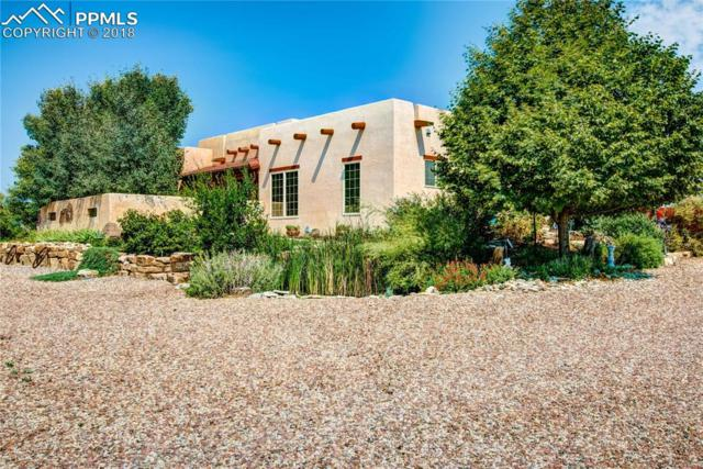 163 E Encanto Drive, Pueblo West, CO 81007 (#6839848) :: The Treasure Davis Team