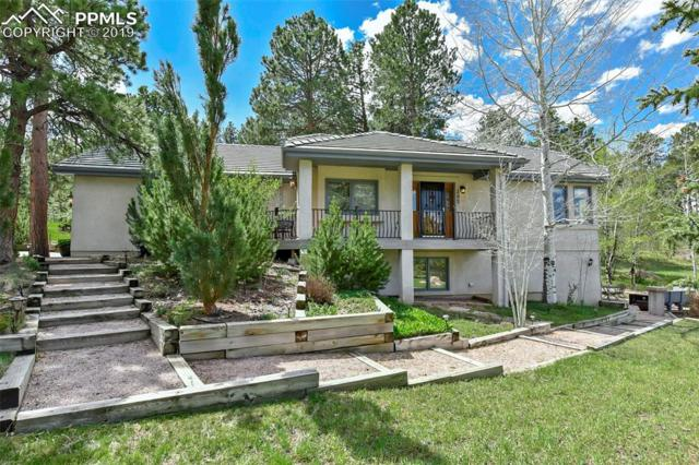 395 Cat Tail Way, Monument, CO 80132 (#6840792) :: The Treasure Davis Team