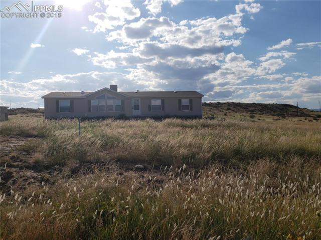 20620 El Nino Point, Fountain, CO 80817 (#6847867) :: Jason Daniels & Associates at RE/MAX Millennium