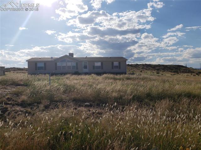 20620 El Nino Point, Fountain, CO 80817 (#6847867) :: 8z Real Estate