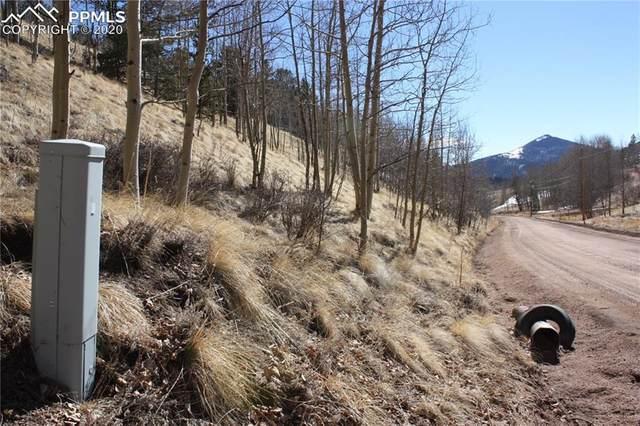 276 Granite Lane, Cripple Creek, CO 80813 (#6852667) :: The Treasure Davis Team
