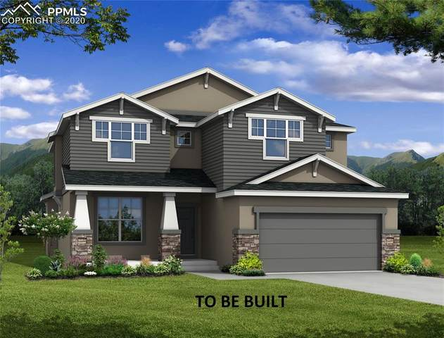 10533 Fall Creek Court, Colorado Springs, CO 80924 (#6853371) :: Jason Daniels & Associates at RE/MAX Millennium