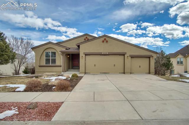 465 Lowick Drive, Colorado Springs, CO 80906 (#6855168) :: Fisk Team, RE/MAX Properties, Inc.