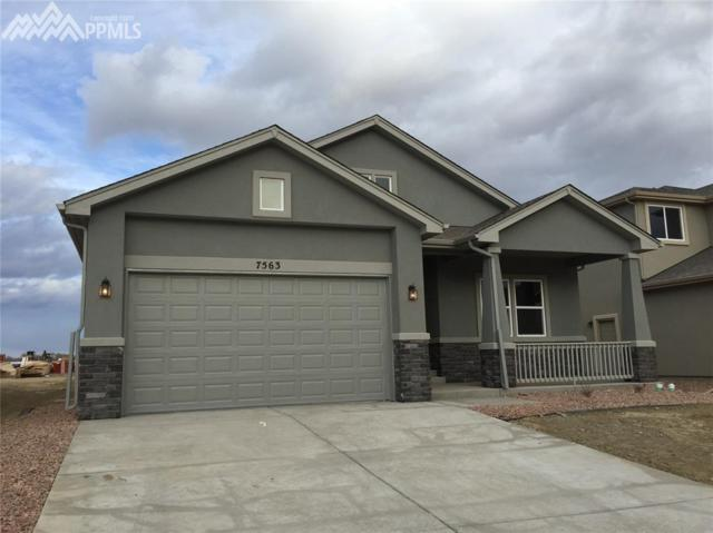 7563 Bigtooth Maple Drive, Colorado Springs, CO 80925 (#6857518) :: 8z Real Estate