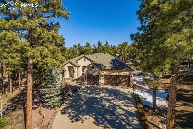 1019 Longspur Lane, Colorado Springs, CO 80921 (#6860463) :: The Peak Properties Group