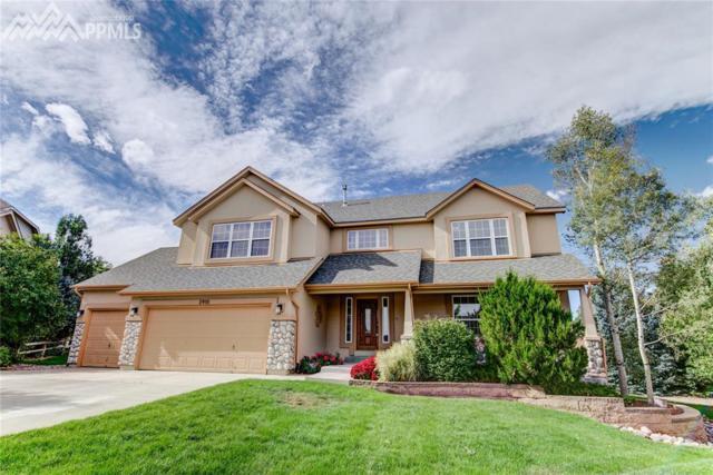 5910 Treeledge Drive, Colorado Springs, CO 80918 (#6864150) :: 8z Real Estate