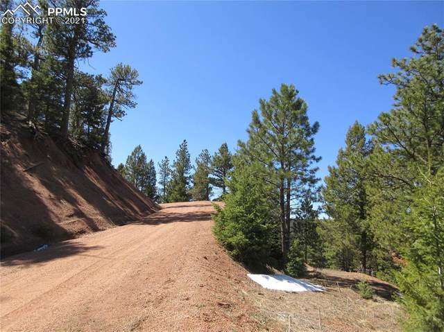 00 Rocky Point Lane, Larkspur, CO 80118 (#6864719) :: Action Team Realty