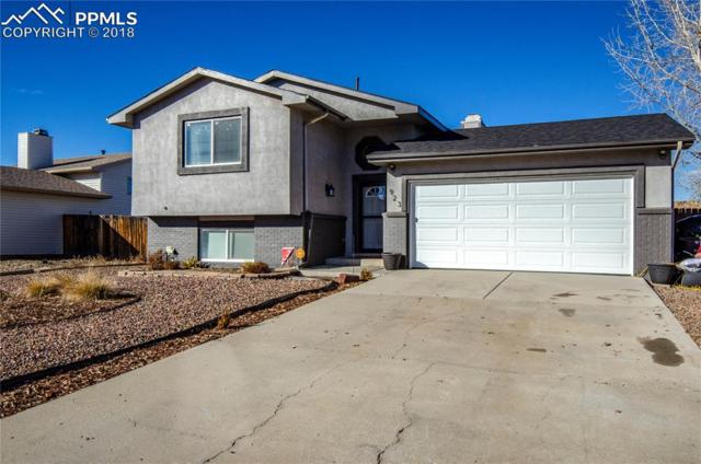923 Rancher Drive, Fountain, CO 80817 (#6871068) :: Action Team Realty
