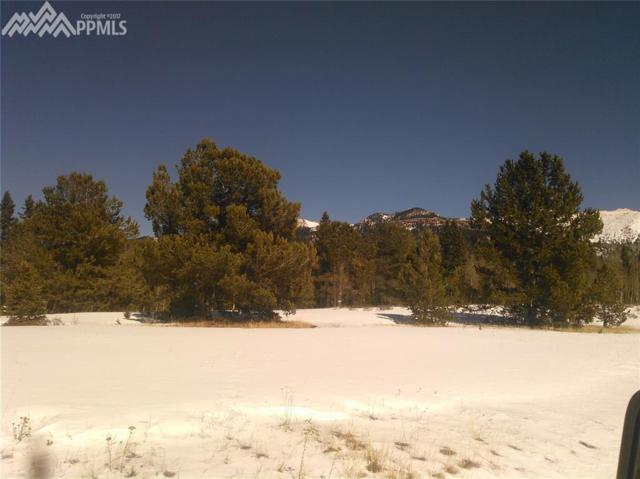 000 County 61 Road, Cripple Creek, CO 80813 (#6872123) :: 8z Real Estate