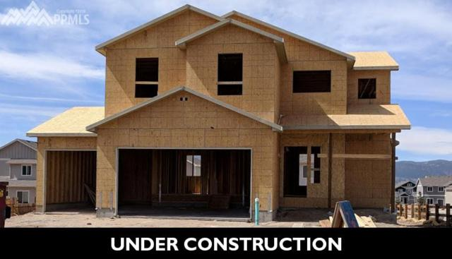 17886 Gypsum Canyon Court, Monument, CO 80132 (#6873534) :: The Daniels Team