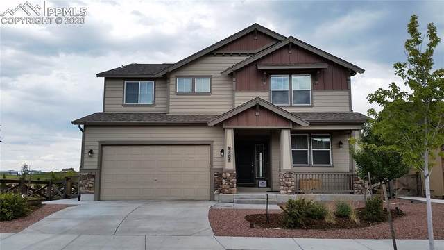 8765 Meadow Tree Trail, Colorado Springs, CO 80927 (#6873852) :: The Daniels Team