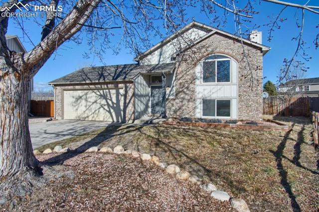 4344 Neal Court, Colorado Springs, CO 80916 (#6881926) :: Action Team Realty