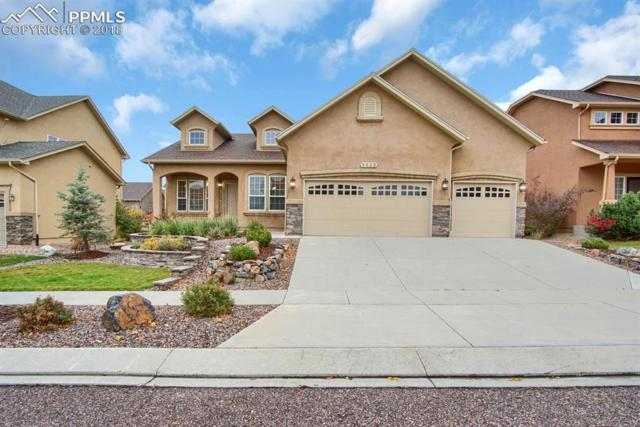 5828 Yancey Drive, Colorado Springs, CO 80924 (#6882784) :: Venterra Real Estate LLC