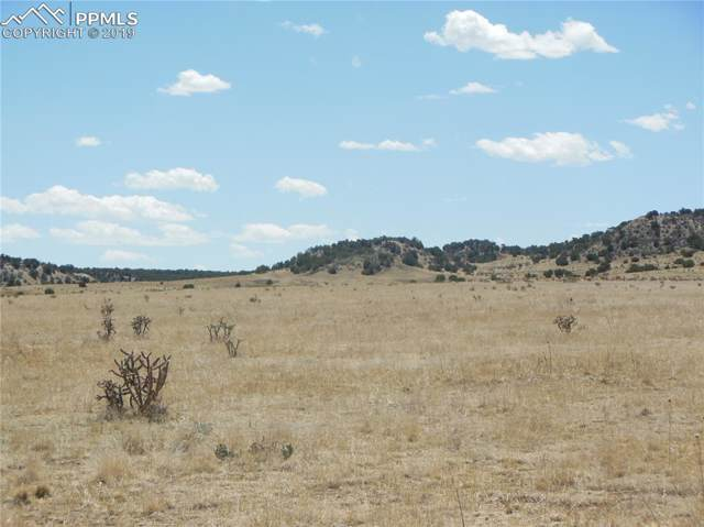 Lot 30 Katherine Lane, Pueblo, CO 81004 (#6883553) :: 8z Real Estate