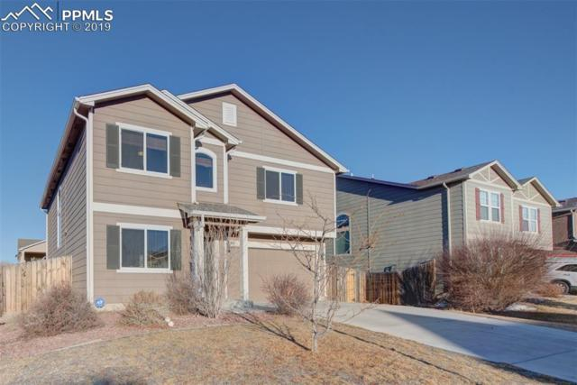 3884 Winter Sun Drive, Colorado Springs, CO 80925 (#6883632) :: Action Team Realty