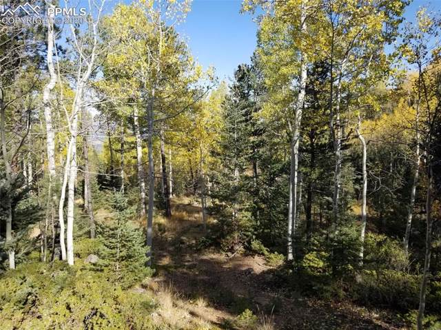 Forest Road, Manitou Springs, CO 80829 (#6884305) :: 8z Real Estate
