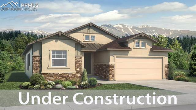 1018 Panoramic Drive, Monument, CO 80132 (#6884915) :: Tommy Daly Home Team