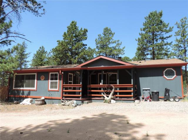 1259 Pathfinder Circle, Florissant, CO 80816 (#6896302) :: Harling Real Estate
