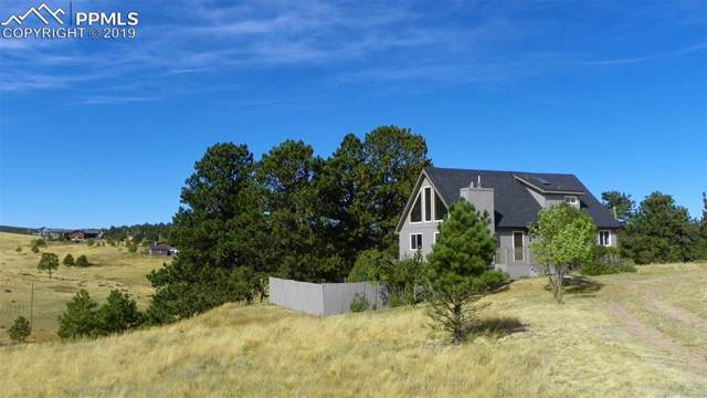 95 Pennsylvania Avenue, Woodland Park, CO 80863 (#6897042) :: Tommy Daly Home Team