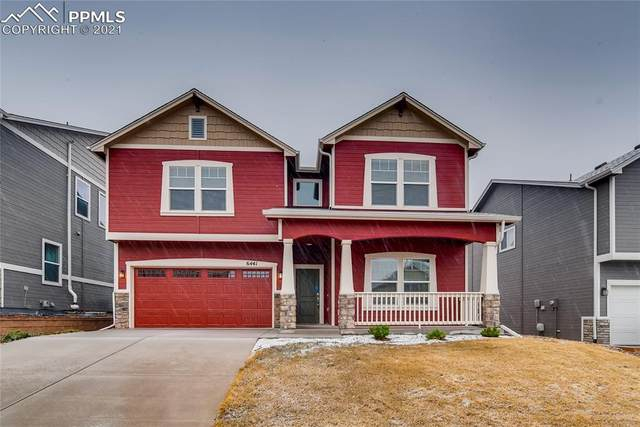 6441 Stonefly Drive, Colorado Springs, CO 80924 (#6899803) :: HomeSmart