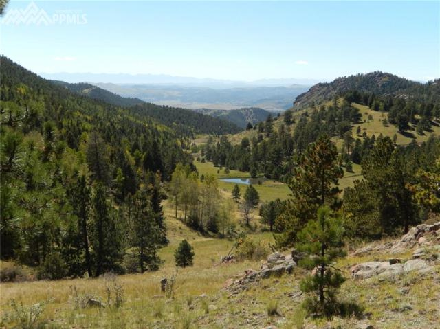 Teller 1 Road, Cripple Creek, CO 80813 (#6906804) :: 8z Real Estate