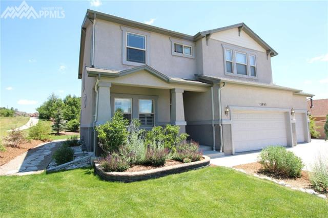 13895 Honey Run Way, Colorado Springs, CO 80921 (#6909126) :: The Hunstiger Team