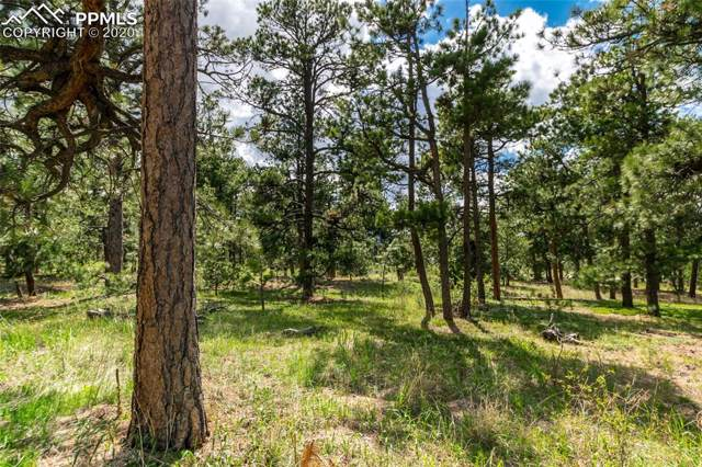 19245 Hilltop Pines Path, Monument, CO 80132 (#6910966) :: Finch & Gable Real Estate Co.