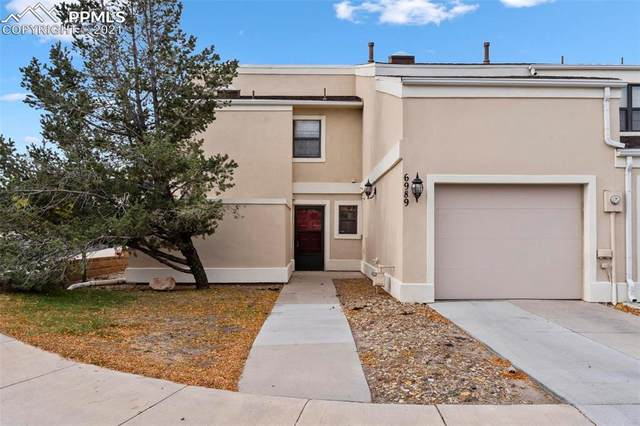 6989 Gayle Lyn Lane, Colorado Springs, CO 80919 (#6913184) :: Tommy Daly Home Team