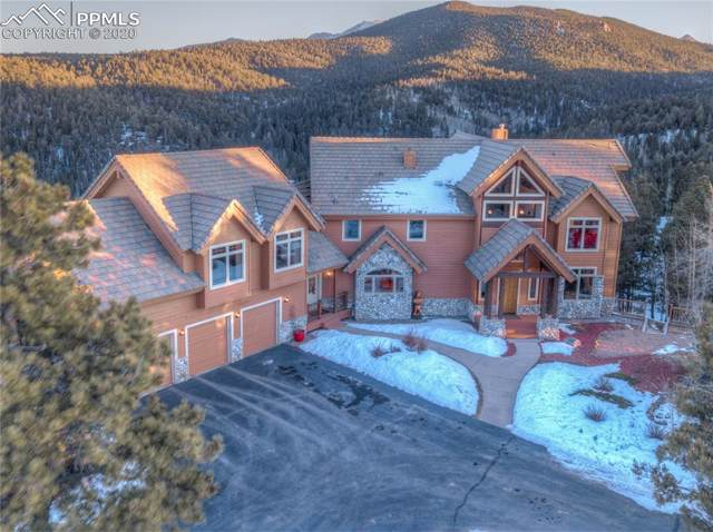 800 Elk Ridge South Road, Divide, CO 80814 (#6914682) :: The Peak Properties Group