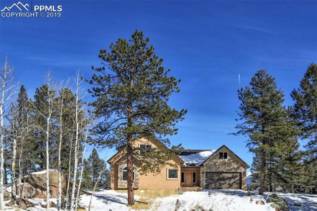 146 Conifer Circle, Florissant, CO 80816 (#6917077) :: 8z Real Estate