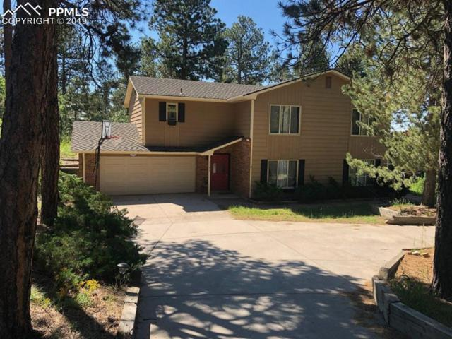 1395 Fawnwood Road, Monument, CO 80132 (#6919807) :: Action Team Realty
