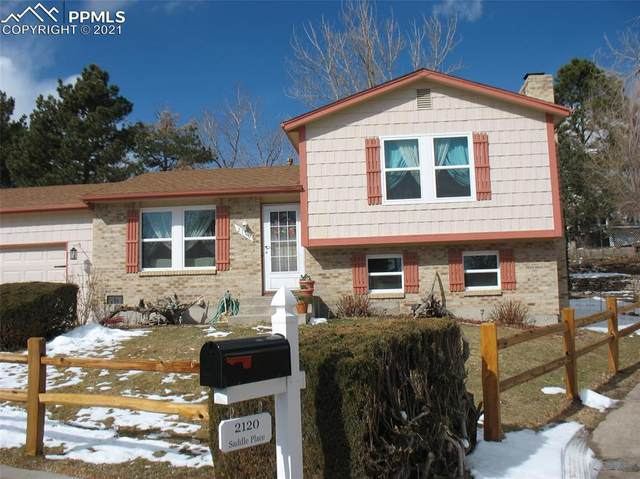 2110 Saddle Place, Colorado Springs, CO 80918 (#6922274) :: The Harling Team @ HomeSmart
