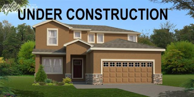8129 Somersby Place, Colorado Springs, CO 80908 (#6922965) :: Action Team Realty