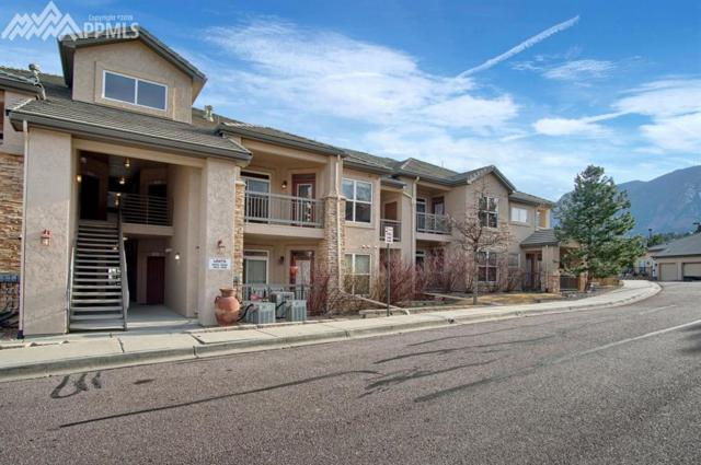 555 Cougar Bluff Point, Colorado Springs, CO 80906 (#6923878) :: The Peak Properties Group