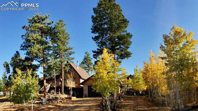 42 Walliface Road, Woodland Park, CO 80863 (#6925174) :: 8z Real Estate